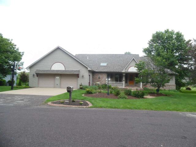 20 Parkview Court, Groveland, IL 61535 (#1194314) :: Adam Merrick Real Estate