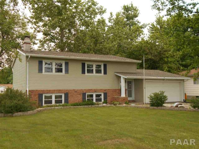 64 Murphy Road, Bushnell, IL 61422 (#1194769) :: Adam Merrick Real Estate