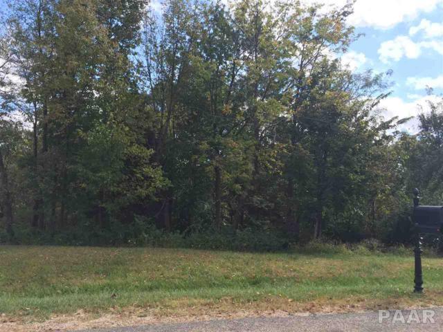 Lot 34 Winterberry, Germantown Hills, IL 61548 (#1195321) :: Adam Merrick Real Estate