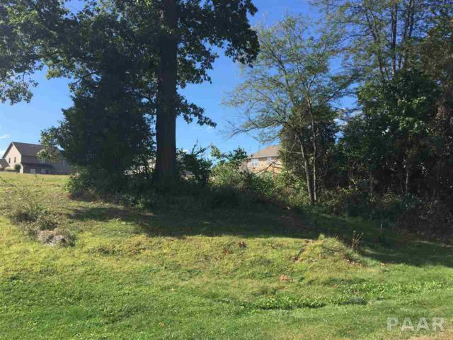 Lot 49A Winterberry, Germantown Hills, IL 61548 (#1195323) :: Adam Merrick Real Estate