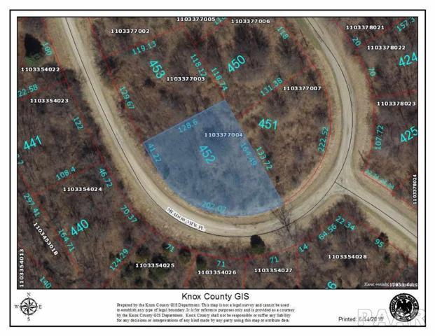 452 Meadow View Place, Dahinda, IL 61428 (#1195425) :: Adam Merrick Real Estate