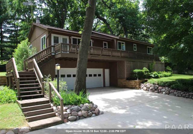 366 Whispering Oaks Drive, Groveland, IL 61535 (#1195432) :: Adam Merrick Real Estate