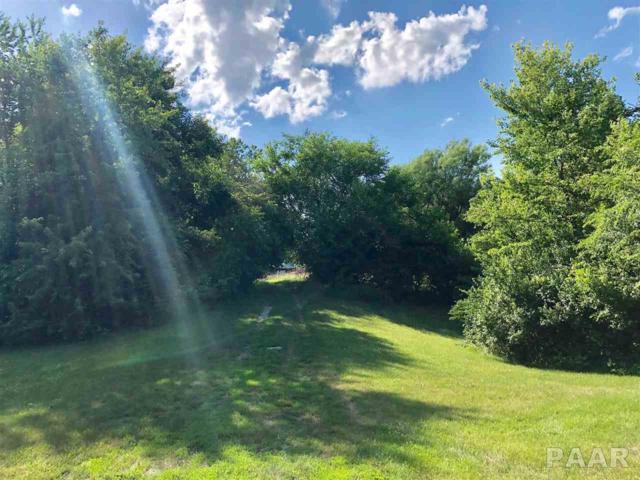 1 Meadow Drive, Macomb, IL 61455 (#PA1195564) :: The Bryson Smith Team