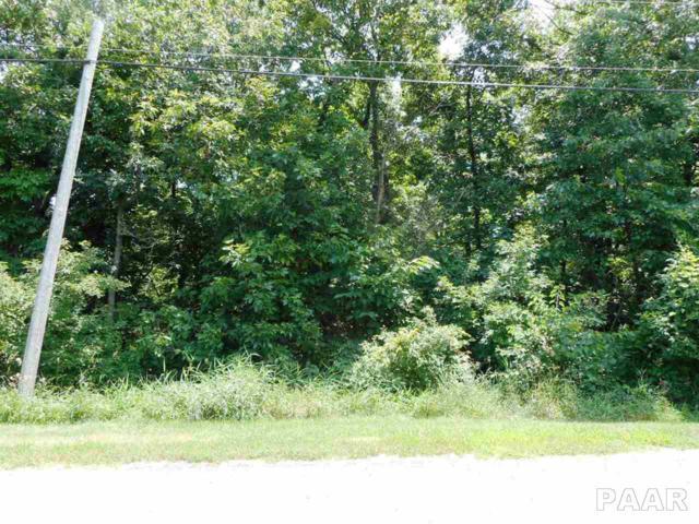 1637 Tanglewood, Varna, IL 61375 (#PA1196401) :: Adam Merrick Real Estate