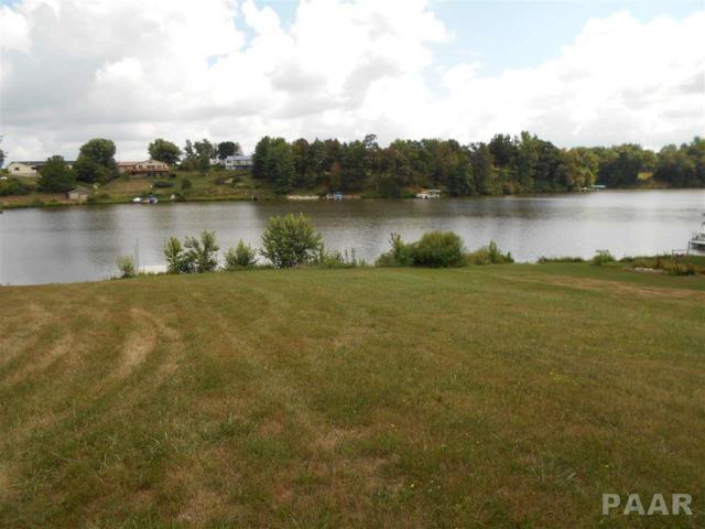 379 Mcgrew Drive, Avon, IL 61415 (#PA1197445) :: Adam Merrick Real Estate