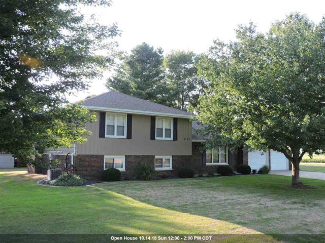 231 N Warren Street, Brimfield, IL 61517 (#1197651) :: Adam Merrick Real Estate