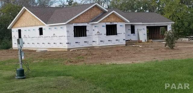 20101 E County Hwy 21, Canton, IL 61520 (#1198015) :: Adam Merrick Real Estate