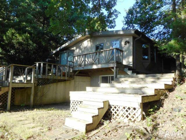 239 Winterhaven, Varna, IL 61375 (#PA1198247) :: Adam Merrick Real Estate