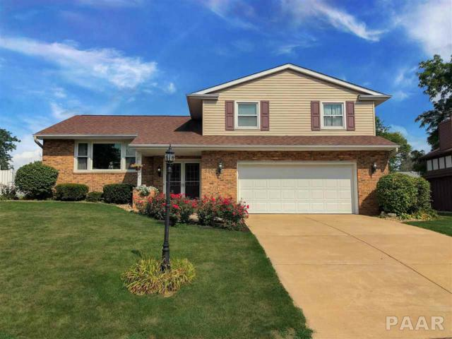5906 N Old Orchard Drive, Peoria, IL 61614 (#PA1198373) :: The Bryson Smith Team