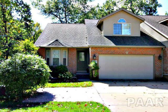 706 Woodland Knolls Road, Germantown Hills, IL 61548 (#1199038) :: Adam Merrick Real Estate