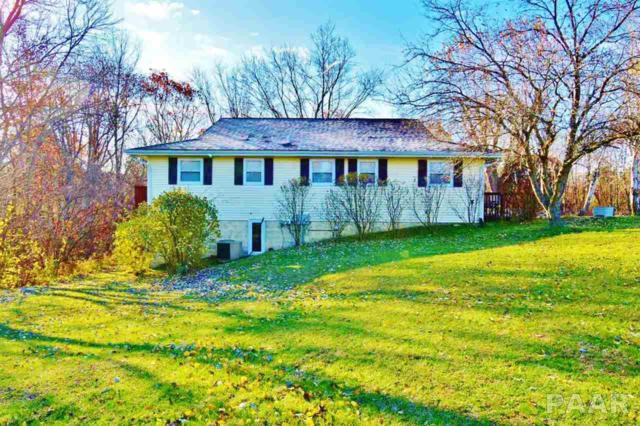 137 Oakview Court, Dahinda, IL 61428 (#1199685) :: Adam Merrick Real Estate