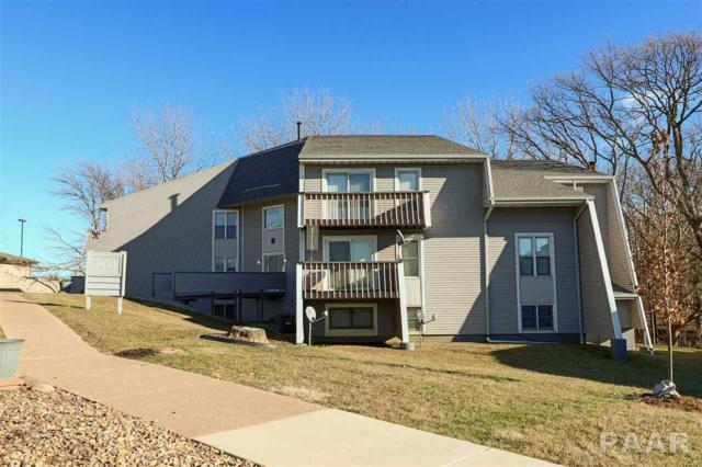 2622 Willow Lake Court #313, Peoria, IL 61614 (#1199933) :: The Bryson Smith Team