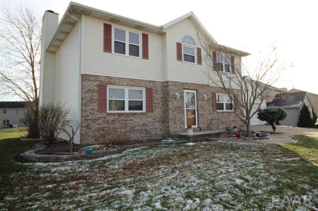 1056 E Polk Street, Morton, IL 61550 (#1200046) :: The Bryson Smith Team