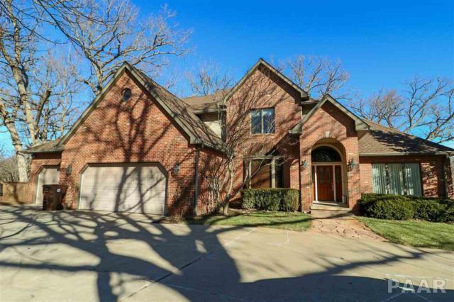 11605 N Nettle Creek Drive, Dunlap, IL 61525 (#1200440) :: Adam Merrick Real Estate