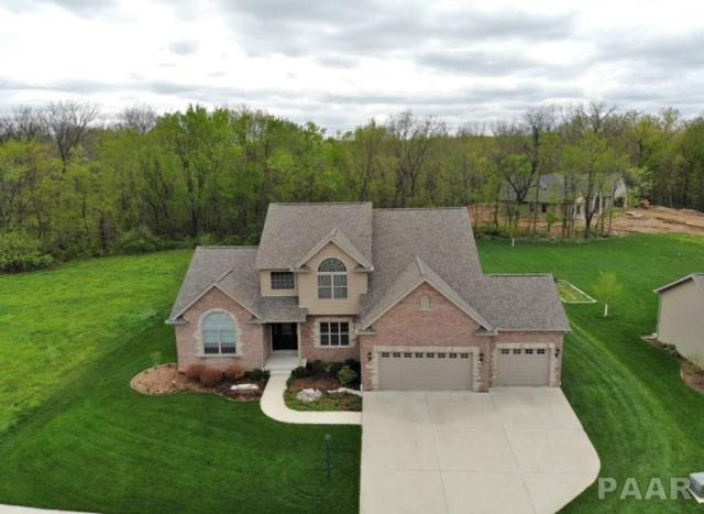207 Greenview Drive, East Peoria, IL 61611 (#PA1200915) :: The Bryson Smith Team