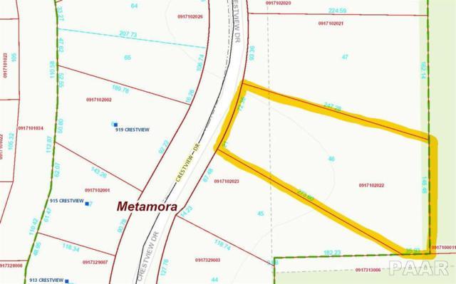 Lot 46 Crestview Drive, Metamora, IL 61548 (#1201461) :: The Bryson Smith Team