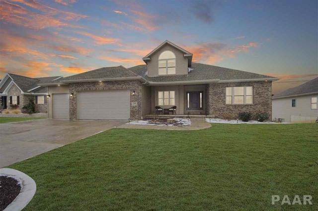 210 Shadow Creek, Washington, IL 61571 (#1201683) :: Adam Merrick Real Estate