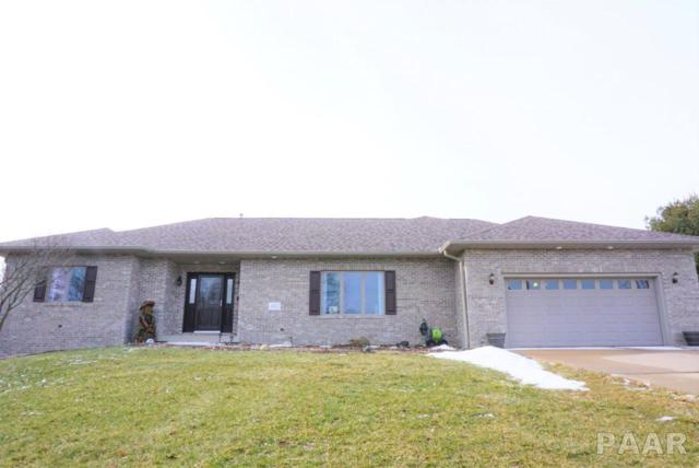 4817 S Lafayette Avenue, Bartonville, IL 61607 (#1201764) :: The Bryson Smith Team