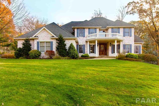 2216 E Bishop Avenue, Peoria, IL 61614 (#PA1202080) :: Adam Merrick Real Estate