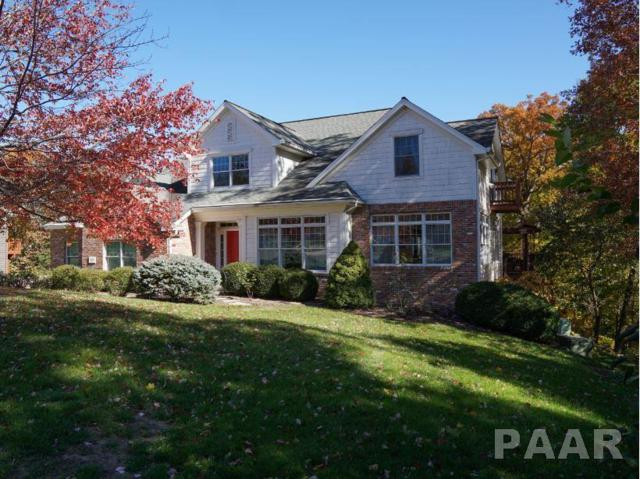 3905 W Crestridge Court, Peoria, IL 61615 (#PA1202489) :: The Bryson Smith Team