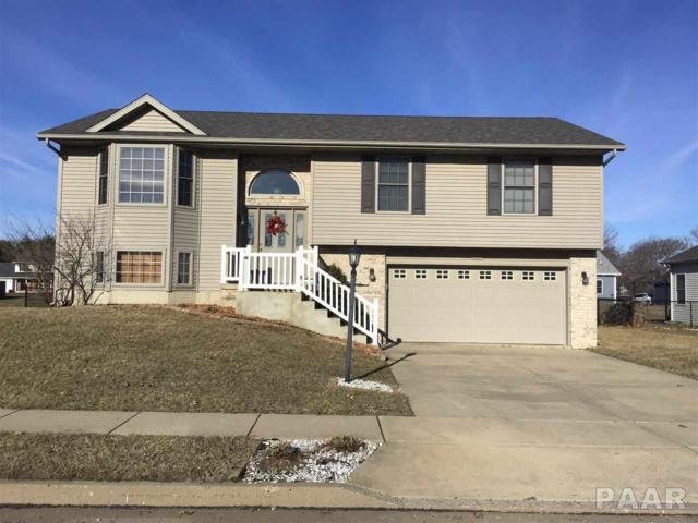 1405 Saddle Brook Lane, Metamora, IL 61548 (#PA1202878) :: Adam Merrick Real Estate