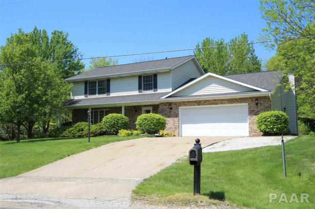 202 E North Lakeview Drive, East Peoria, IL 61611 (#PA1203474) :: The Bryson Smith Team