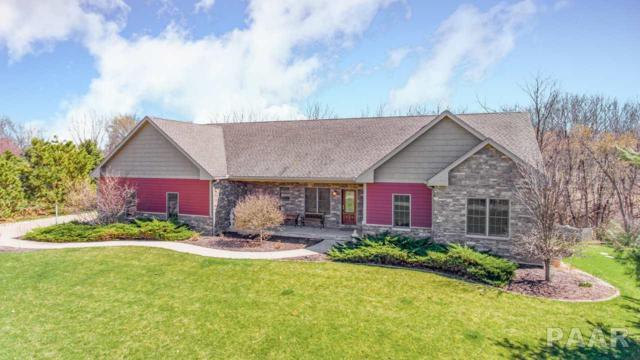 401 Sunnyslope Drive, Varna, IL 61375 (#PA1203595) :: Adam Merrick Real Estate