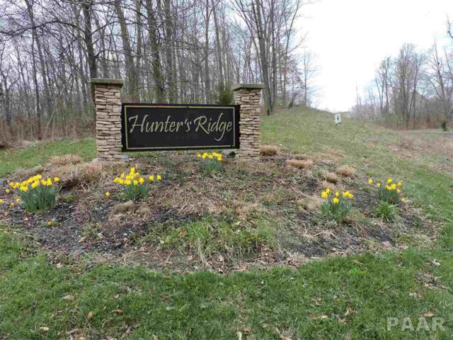 0 W Foxtail Circle, Bartonville, IL 61607 (#PA1203621) :: Adam Merrick Real Estate