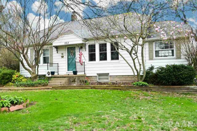 203 W Clara Avenue, Peoria, IL 61614 (#PA1203674) :: Adam Merrick Real Estate