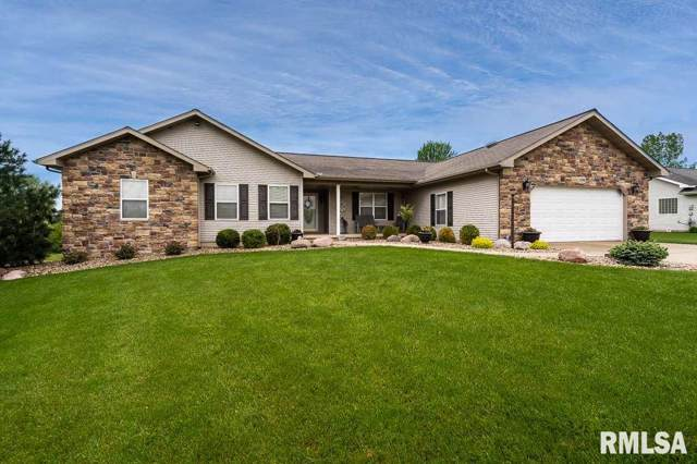 109 Oak Grove Circle, Dahinda, IL 61428 (#PA1204898) :: Nikki Sailor | RE/MAX River Cities