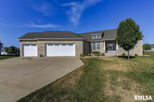 1117 Dogwood Court, Sherman, IL 62684 (#CA1046) :: Killebrew - Real Estate Group