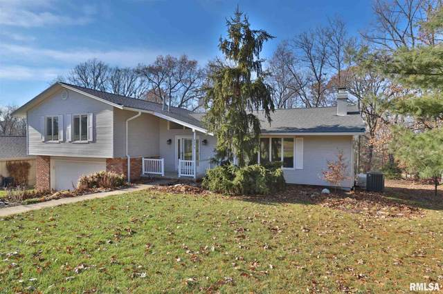 424 Northern Oaks Drive, Groveland, IL 61535 (#PA1208307) :: Adam Merrick Real Estate