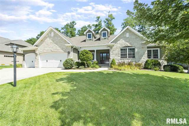 908 S Copperpoint Drive, Dunlap, IL 61525 (#PA1208657) :: The Bryson Smith Team