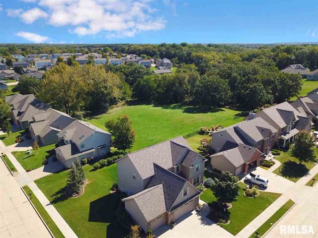 6834 N Sumac Road, Edwards, IL 61528 (#PA1208781) :: Adam Merrick Real Estate