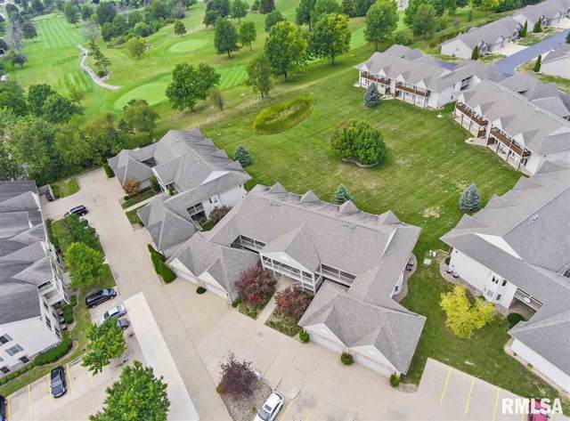 7319 N Villa Lake Drive, Peoria, IL 61614 (#PA1208947) :: Killebrew - Real Estate Group