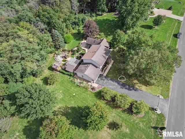 14929 W Carlton Court, Brimfield, IL 61517 (#PA1209644) :: Adam Merrick Real Estate