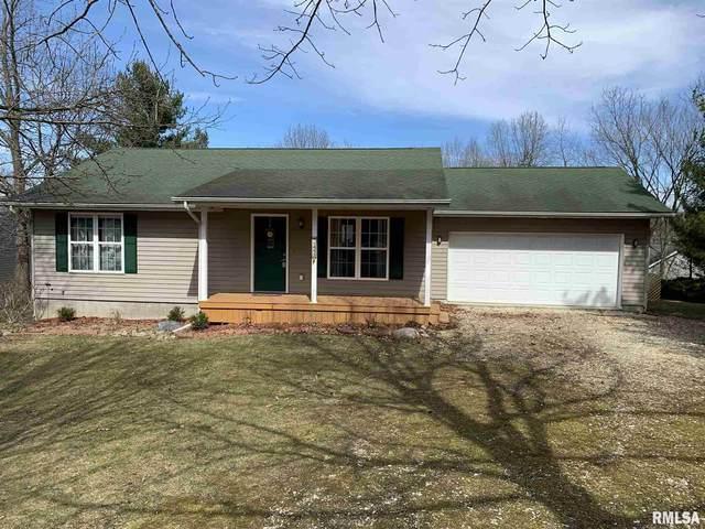 1453 Lakeview Road North Road, Dahinda, IL 61428 (#PA1210801) :: Killebrew - Real Estate Group