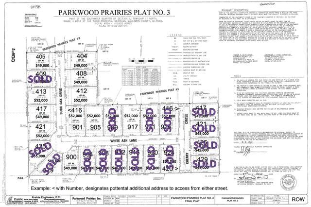 900 White Ash Lane, Williamsville, IL 62693 (#CA997154) :: RE/MAX Professionals