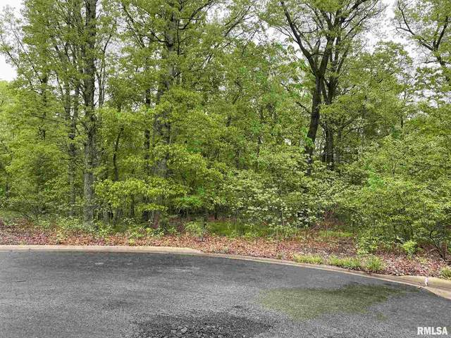 Lot 2 W South Forest Trail, Peoria, IL 61615 (#PA1211598) :: RE/MAX Preferred Choice