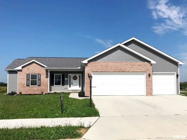 1031 Haymeadow Lane, Metamora, IL 61548 (#PA1211841) :: RE/MAX Preferred Choice