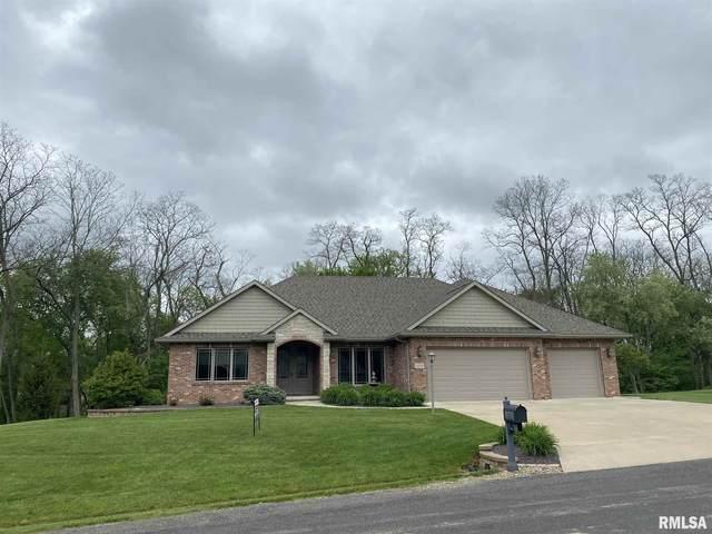 11314 N Fox Meadow Drive, Brimfield, IL 61517 (#PA1212912) :: Killebrew - Real Estate Group