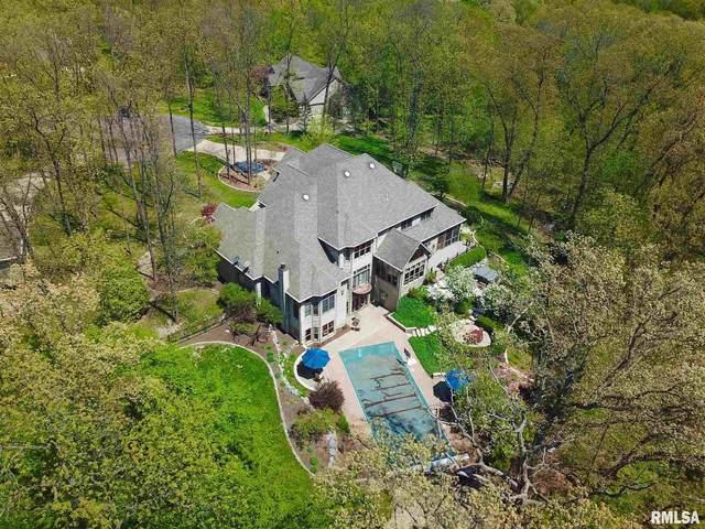 7300 N Honeysuckle Court, Brimfield, IL 61517 (#PA1213665) :: Adam Merrick Real Estate