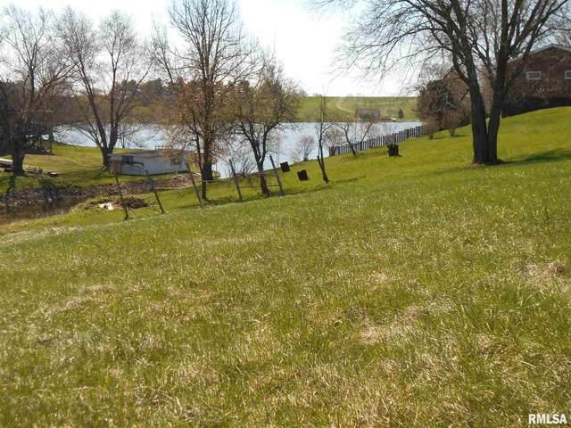 389 Mcgrew Drive, Avon, IL 61415 (#PA1214220) :: Killebrew - Real Estate Group