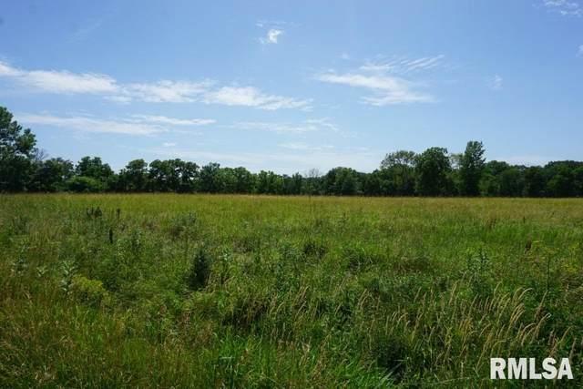04 E Miller Road, Edelstein, IL 61523 (#PA1216342) :: The Bryson Smith Team