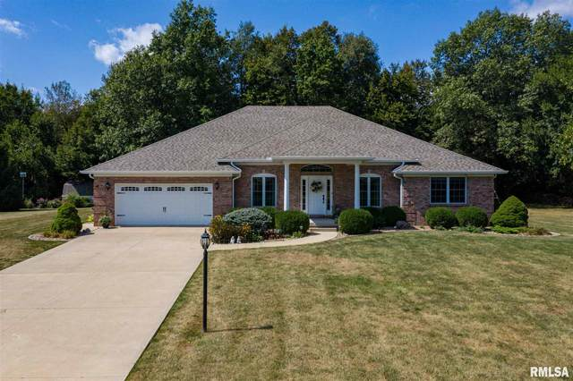 10825 N Fox Meadow Drive, Brimfield, IL 61517 (#PA1218405) :: The Bryson Smith Team