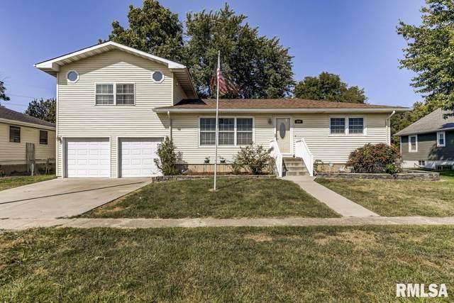 249 W Mcgrath Street, Williamsville, IL 62693 (#CA1002663) :: Killebrew - Real Estate Group