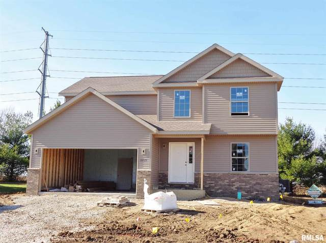 10715 N Sawmill Lane, Dunlap, IL 61525 (#PA1220604) :: RE/MAX Professionals