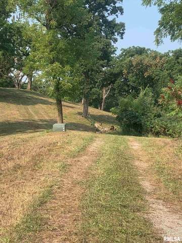 Lots 10 & 5 Fancy Creek, Andalusia, IL 61232 (#QC4217348) :: Paramount Homes QC