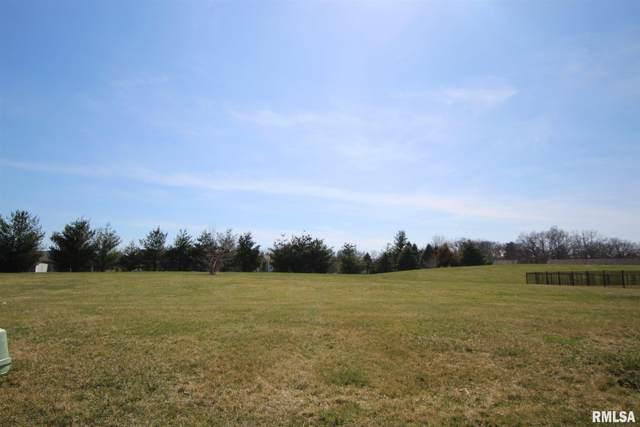 1306 Cedarlake Drive, Metamora, IL 61548 (#PA1222040) :: The Bryson Smith Team