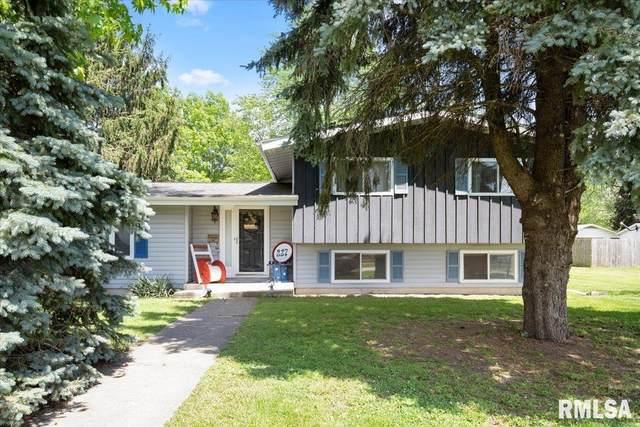 227 N Kennedy Road, Auburn, IL 62615 (#CA1007527) :: Killebrew - Real Estate Group